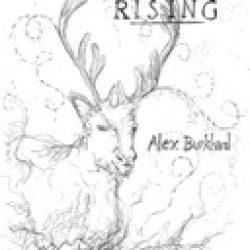 Buch: Karibu Rising
